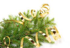 Christmas tree branch and golden ribbon Royalty Free Stock Images