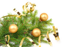 Christmas tree branch and golden ribbon. Isolated on white background Royalty Free Stock Photo