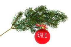 Christmas tree branch, isolated Stock Photography