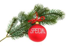 Christmas tree branch, isolated Stock Image