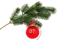 Christmas tree branch, isolated Royalty Free Stock Image