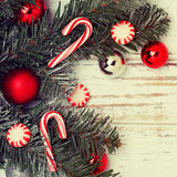 Christmas tree branch with red balls Royalty Free Stock Images