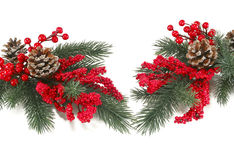 Christmas tree branch with red berries Royalty Free Stock Photo