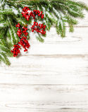 Christmas tree branch with red berries. Winter holidays decorati Royalty Free Stock Photos