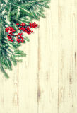 Christmas tree branch with red berries. Winter holidays vintage Stock Photos