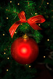 Christmas tree branch with red ornament stock photography