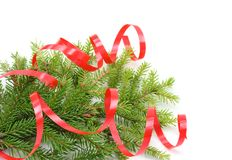 Christmas tree branch and red ribbon Royalty Free Stock Photography