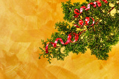 Christmas tree branch with red ribbon decoration Stock Image