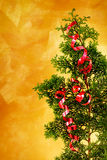 Christmas tree branch with red ribbon decoration Royalty Free Stock Photography