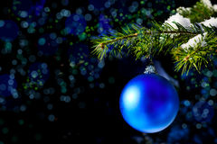 Christmas tree branch with snow and blue ornament Royalty Free Stock Photography
