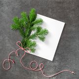 Christmas tree branch white paper minimal flat lay Stock Photography