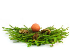 Christmas tree branches Stock Image