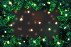 Christmas tree branches background. Festive Xmas border of green branch of pine with sparkling lights garland, vector illustration