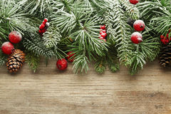 Christmas tree branches background Stock Image