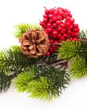 Christmas tree branches border over white Royalty Free Stock Image