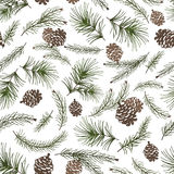 Christmas tree branches,cone seamless pattern. Christmas tree green branches,pine cone  in seamless pattern background.Fir,spruce design element for backdrop Royalty Free Stock Photo