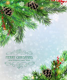 Christmas tree branches with cones and berries Stock Photo