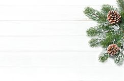 Christmas tree branches cones Winter holidays. Christmas tree branches with cones. Winter holidays background royalty free stock photos