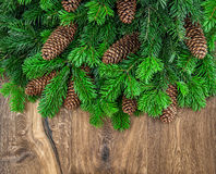 Christmas tree branches with cones on wooden background Royalty Free Stock Image