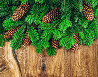 Christmas tree branches with cones on wooden background Royalty Free Stock Images
