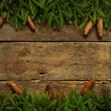 Christmas tree branches with cones on wooden texture ready for y Royalty Free Stock Images
