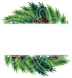 Christmas tree branches and cones. Christmas wreath with pine branches and cones. Abstract winter background Royalty Free Stock Images