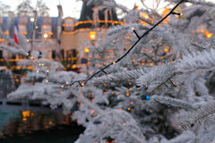 Christmas tree branches with fairy lights by dusk. Fairy lights shining on the frost-covered branches of a Christmas tree outside in a park. The lakeside Royalty Free Stock Photography