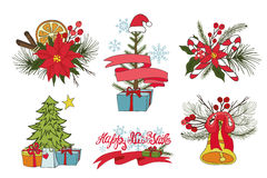 Christmas tree branches,flowers,decor group Royalty Free Stock Photo