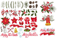 Christmas tree branches,flowers,decor kit Royalty Free Stock Images