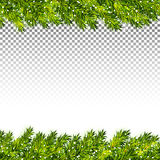 Christmas tree branches frame on transparent background vector.  Royalty Free Stock Image