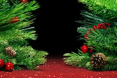 Christmas tree branches on glittering background Stock Photos