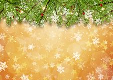 Christmas tree branches on gold star background. With snowflakes Royalty Free Stock Photos