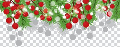 Christmas tree branches with holly berries on a transparent background. Holidays decoration banner. Vector. Illustration Stock Photos