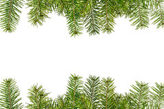 Christmas tree branches isolated on white background Stock Photography