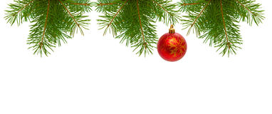 Christmas tree branches and  red ball. Christmas tree branches  isolated on white Royalty Free Stock Photos