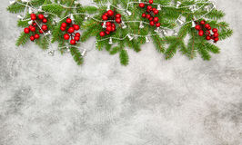 Christmas tree branches red berries silver garland Stock Photos