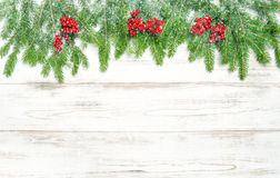 Christmas tree branches and red berries in snow decoration Stock Image