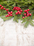 Christmas tree branches and red berries on the white board Royalty Free Stock Photography