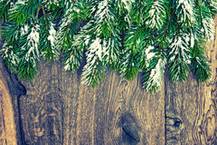 Christmas tree branches on rustic wooden background. Vintage sty Royalty Free Stock Photo