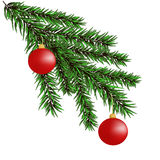 Christmas-tree branches Stock Photography
