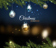Christmas tree branches 02 A Royalty Free Stock Photo