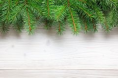 Christmas tree branches on wooden background. Royalty Free Stock Images