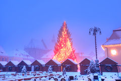 Christmas tree in Brasov, Transylvania Stock Photos
