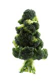 Christmas tree from brocolli Royalty Free Stock Photography