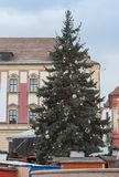 Christmas tree on the Cabbage Market in Brno, Czech Republic.  Royalty Free Stock Photography