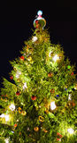 Christmas tree called Treasures of the Elves in old Riga. Glowing Christmas tree named Treasures of the Elves at the Dome square in old Riga, Latvia. The tree Stock Photos