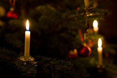 Christmas Tree Candle Stock Photography