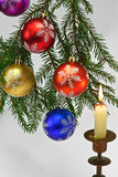 Christmas tree and candle Royalty Free Stock Photography