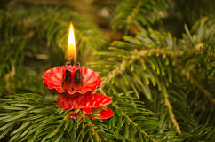 Christmas tree candle Royalty Free Stock Photography