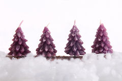 Christmas tree candles Stock Images